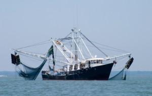 Pesce e povertà: il saccheggio africanoI