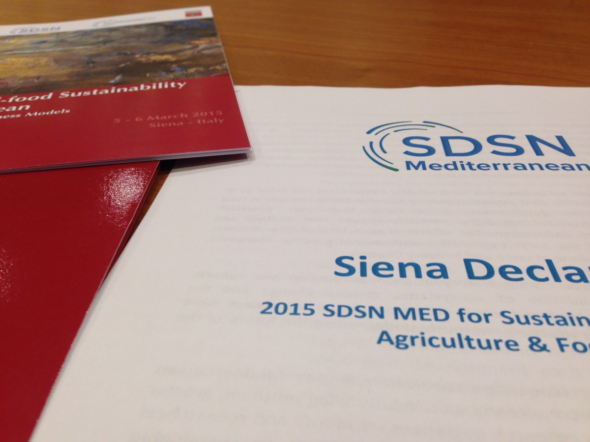 SDSN Youth at the SDSN MediterraneanConference